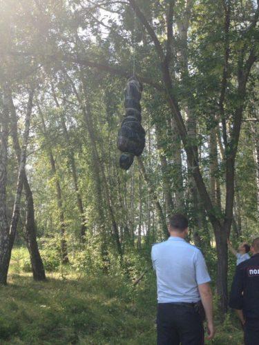 これはビビる!ロシアの森で見つかった質の悪いイタズラ