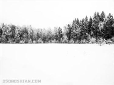 【寒いモスクワツアー】真冬のモスクワ郊外のダーチャへ行ったら美味しくて真っ白だった