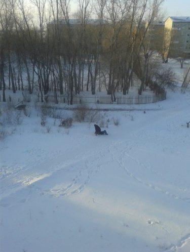 これがロシアだよ、力を抜いて。窓から見えた雪上の出来事