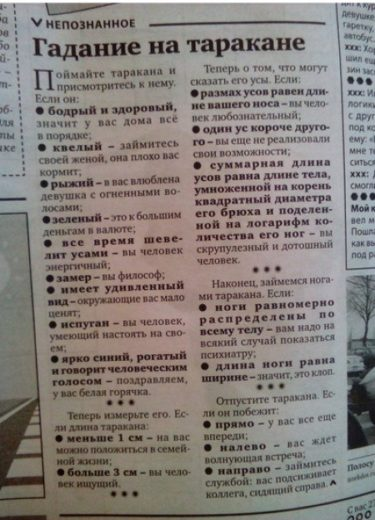 ゴキブリを一匹捕まえればお手軽に占える!ロシアの新聞に掲載されていた謎のゴキブリ占い