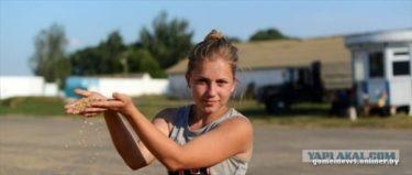 ベラルーシの小麦姫がかっこいい!普通の女の子が大型コンバインで小麦を収穫!!