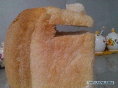 おそロシア!妻にパンの切り方を注意したら逆ギレして手におえないので義母を呼んだら妻を殴って黙らせた