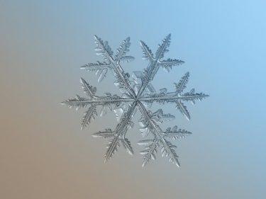 ロシア人「雪の結晶とその撮影方法を見てみよう!」