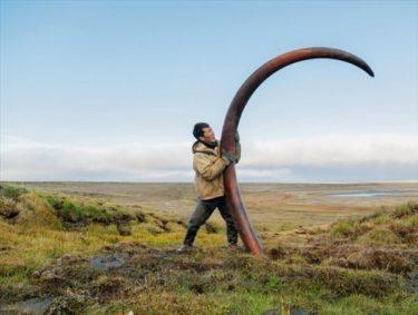 シベリアでマンモスの牙を掘り出して暮らす人々