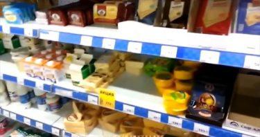 これがロシアだ!スーパーで猫が・・・