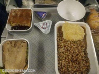 アエロフロートの特別機内食「ロシア料理」を頼んだら微妙すぎた