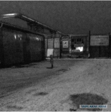 真夜中にロシア人が幽霊と見間違えたものとは?