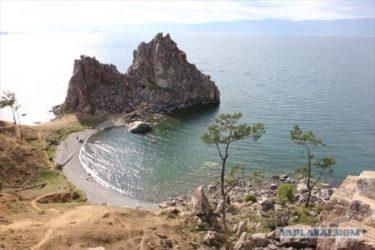バイカル唯一の有人島、オリホン島にいた太りすぎて穴から出れなくなったメタボなジリス