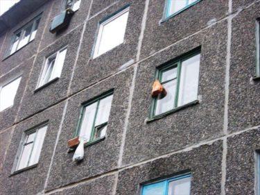 ロシアでは昔、冷蔵庫に入らない食べ物はアパートの窓の外にぶら下げていた