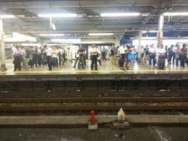 電車を待つ日本人の列がロシアのサイトで話題に