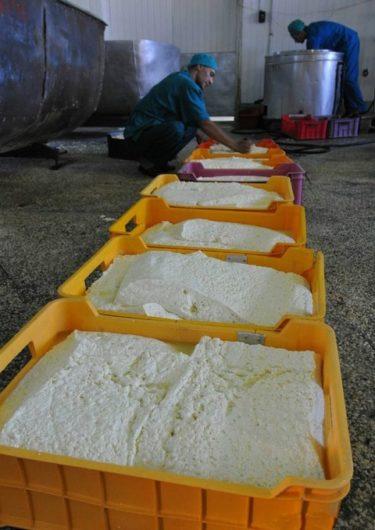 ロシア人「みんな大好き三つ編みチーズの作り方を見てみよう!」